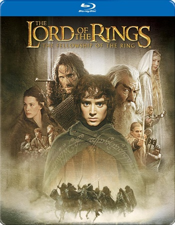 Lord Of The Rings 1 The Fellowship of the Ring 2001 Hindi Dual Audio BluRay
